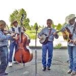 Queen Bluegrass